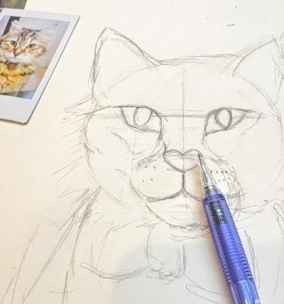 How to draw a pastel drawing. Pastel Cat - Step 12