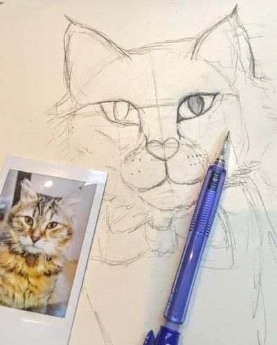 How to draw a pastel drawing. Pastel Cat - Step 14