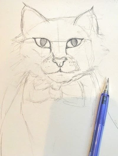 How to draw a pastel drawing. Pastel Cat - Step 15