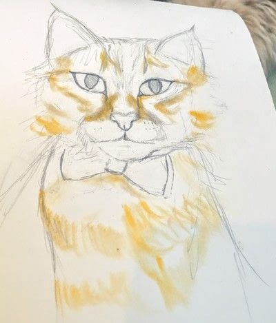 How to draw a pastel drawing. Pastel Cat - Step 19