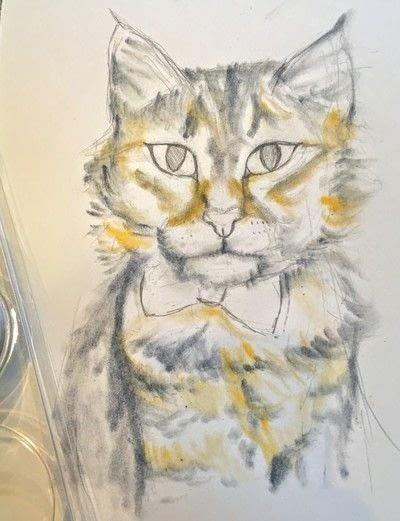 How to draw a pastel drawing. Pastel Cat - Step 21