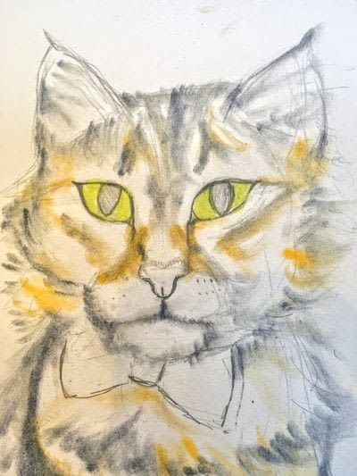 How to draw a pastel drawing. Pastel Cat - Step 22