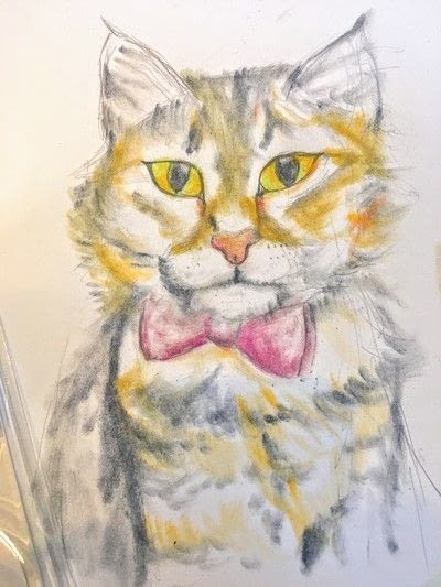 How to draw a pastel drawing. Pastel Cat - Step 23