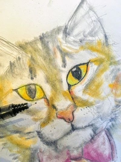 How to draw a pastel drawing. Pastel Cat - Step 24