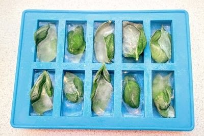 How to make your own ingredient. Herb Ice Cubes - Step 1