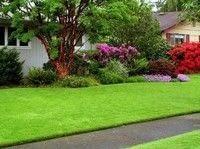 Small 114580 2f2016 06 22 131145 a clean green garden lk2l5