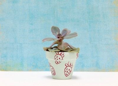 How to paint a painted flower pot. Fruit Stamped Flower Pots - Step 2