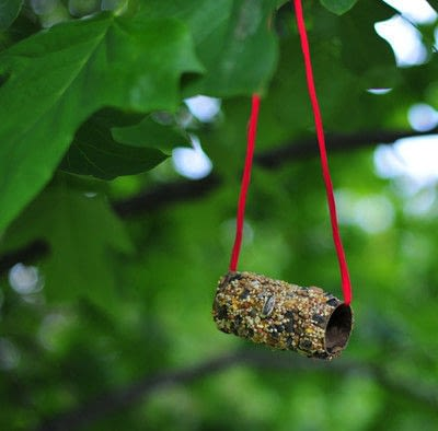 How to make a garden decoration. Extremely Easy Bird Feeder From Toilet Paper Roll - Step 5