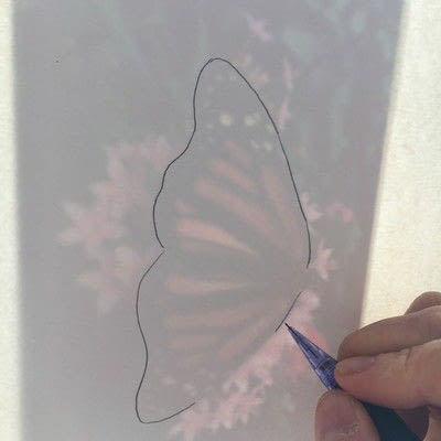 How to paint a piece of watercolor art. How To Draw And Paint A Butterfly Step By Step - Step 2