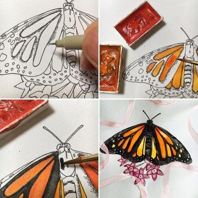 How to paint a piece of watercolor art. How To Draw And Paint A Butterfly Step By Step - Step 4