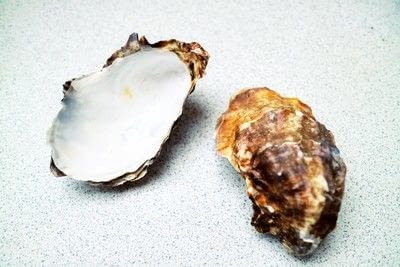 How to make a shell candle. Seashell Candles - Step 1