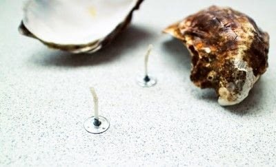 How to make a shell candle. Seashell Candles - Step 3