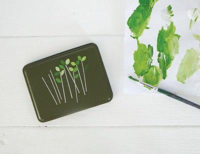 How to make a garden / terrarium. Cress Growing Kit - Step 3