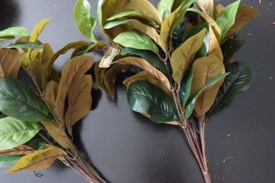 How to make a wreath. Diy Magnolia Leaf Wreath - Step 1