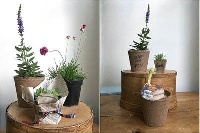 How to make a vase, pot or planter. Plantable Party Favors - Step 3