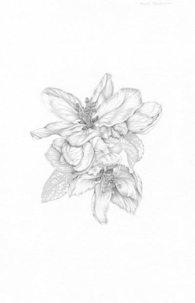 How to make a drawing. Apple Blossom - Step 6
