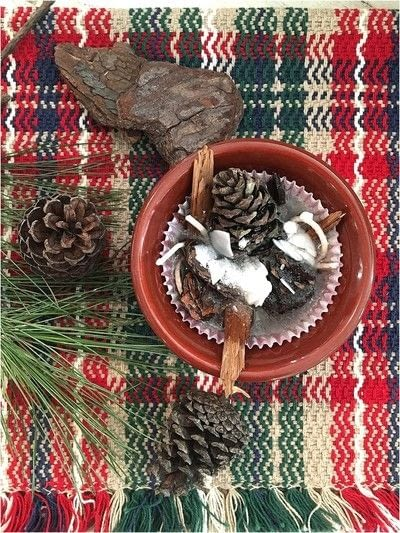 How to make a techniques. Pinecone Fire Starters - Step 2