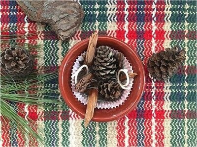 How to make a techniques. Pinecone Fire Starters - Step 3