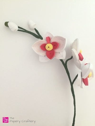 How to make a paper flower. Quilling Paper Orchid - Step 7