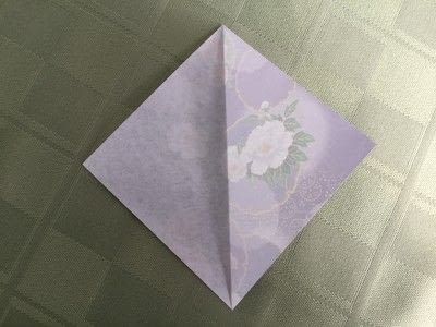 How to make an origami flower. Origami Aster - Step 2