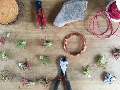 How to make a vase, pot or planter. Wire Air Plant Holders - Step 1