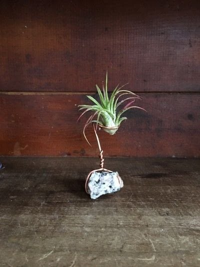 How to make a vase, pot or planter. Wire Air Plant Holders - Step 7