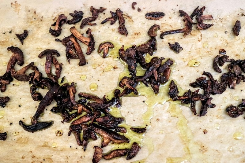 how to grow shiitake mushrooms step by step