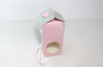 How to make an outdoor accessory. DIY Bird Feeder Made of Milk Carton - Step 5