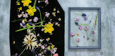 How to make a piece of pressed flower art. How To Make Floral Wall Art  - Step 6