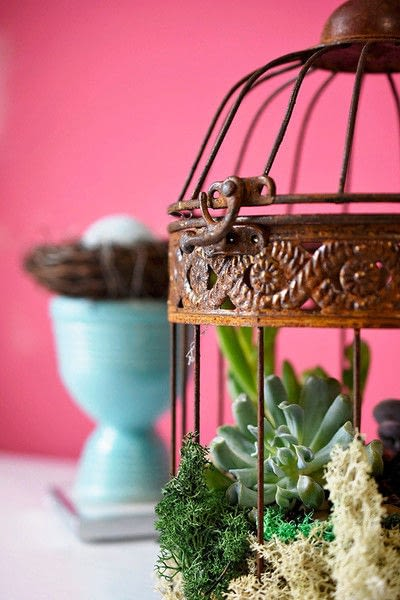 How to make a vase, pot or planter. Bird Cage Succulent Planter - Step 5