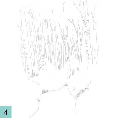 How to paint a landscape. How To Draw A Woodland - Step 4