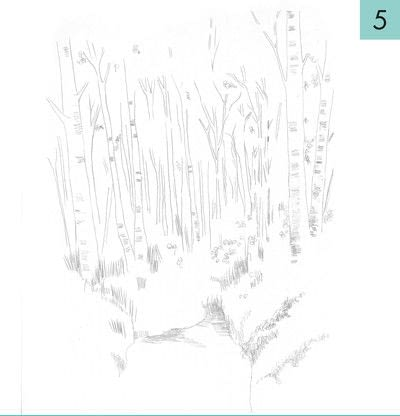 How to paint a landscape. How To Draw A Woodland - Step 5