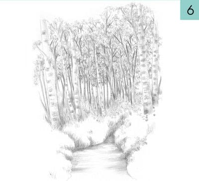 How to paint a landscape. How To Draw A Woodland - Step 6