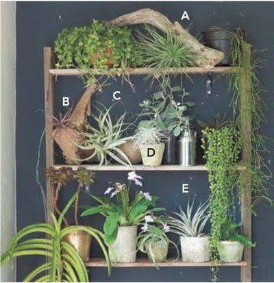 How to make a garden / terrarium. A Little Garden On Shelves - Step 3