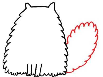 How to draw an animal drawing. Draw A Perky, Fluffy Persian - Step 5