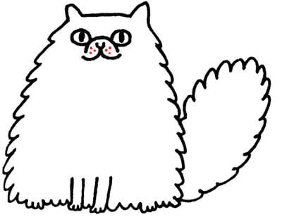 How to draw an animal drawing. Draw A Perky, Fluffy Persian - Step 6