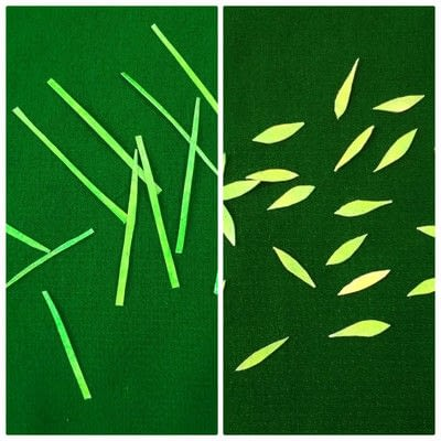 How to cut a piece of papercutting. Forest Craft Ideas - Step 7