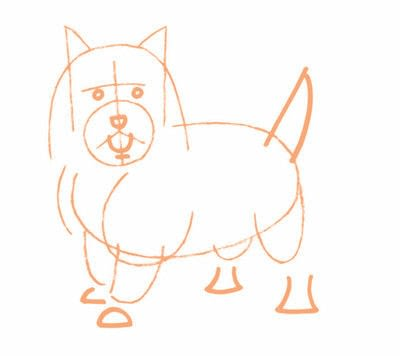 How to draw an animal drawing. Draw A Terrior Dog - Step 5