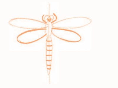How to draw an animal drawing. Draw A Dragonfly - Step 3