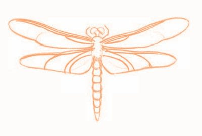 How to draw an animal drawing. Draw A Dragonfly - Step 5