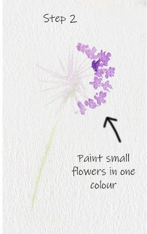 How to paint a piece of watercolor art. Allium Floral Watercolor Tutorial - Step 2