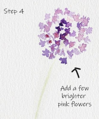 How to paint a piece of watercolor art. Allium Floral Watercolor Tutorial - Step 4