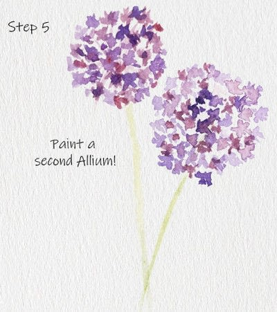 How to paint a piece of watercolor art. Allium Floral Watercolor Tutorial - Step 5