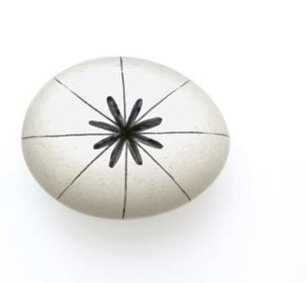 How to make a decorative egg. Black And White Snowflake Egg - Step 1