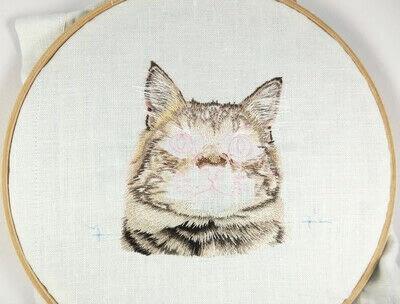 How to make a needlecraft. Tabby Pocket Cat - Step 25