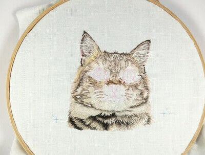 How to make a needlecraft. Tabby Pocket Cat - Step 29
