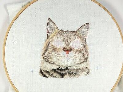 How to make a needlecraft. Tabby Pocket Cat - Step 34