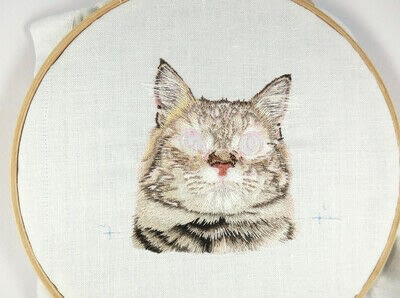 How to make a needlecraft. Tabby Pocket Cat - Step 35