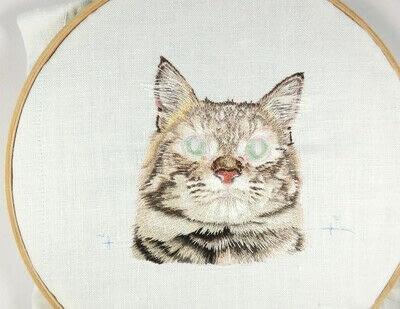 How to make a needlecraft. Tabby Pocket Cat - Step 37