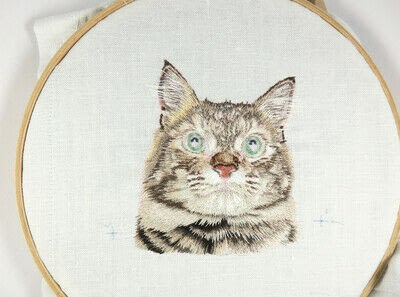 How to make a needlecraft. Tabby Pocket Cat - Step 39